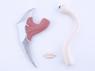 Picture of New Parasyte Izumi shinichi Parasite Migi Cosplay Set mp002135