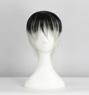 Picture of Tokyo Ghoul Kaneki Ken Haise Sasaki Cosplay Wig 346E