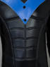 Picture of Ready to Ship Batman: Arkham City Nightwing Richard John Dick Grayson Cosplay Costume mp002670