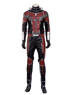 Picture of Ant-Man Scott Lang Cosplay Costume mp002671