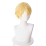 Picture of Sword Art Online S3 Eugeo Cosplay Wigs mp004915