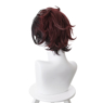 Picture of Demon Slayer: Kimetsu no Yaiba Kamado Tanjirou Cosplay Wigs mp004927