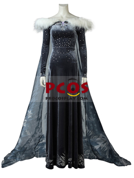 Picture of Frozen Elsa Ice and Snow Adventure Princess Dress Cosplay Costume mp004958