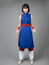Picture of Dragon Ball Chichi 1 Cospaly Costume mp004002