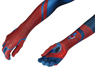 Picture of The Amazing Spider-Man Peter Parker Cosplay Costume mp005279