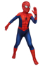 Picture of Ultimate Spider-Man Peter Parker Cosplay Costume for Kids mp005480
