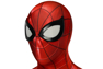 Picture of Spider Man PS4 Peter Parker Armour-MK IV Cosplay Suit mp005701