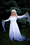 Picture of elsa dress