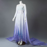 Picture of Ready to Ship Frozen 2 Elsa Spirit Dress Cosplay Costume mp005584