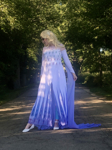 Picture of Elsa Spirit Dress is a MUST buy